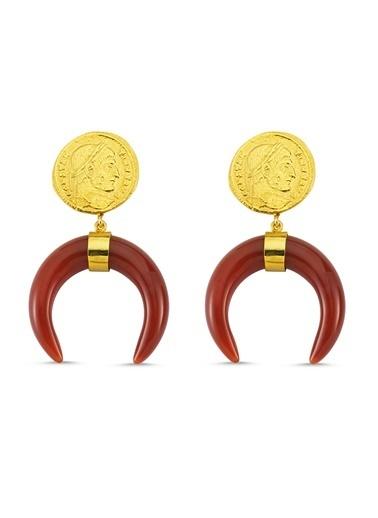 Reian Jewelry Coın Akık Küpe Altın
